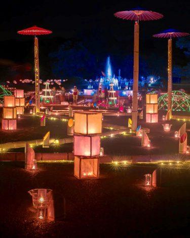 茨城県植物園ナイトガーデン